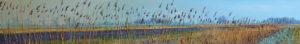 Gertjan Scholte-Albers riet bij Broeksterweg 30 x 200 cm olieverf op doek