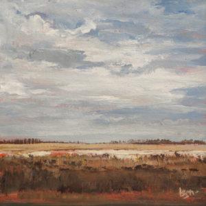 Ben Steijn Lauwersmeer II 30 x 30 cm acrylverf op paneel